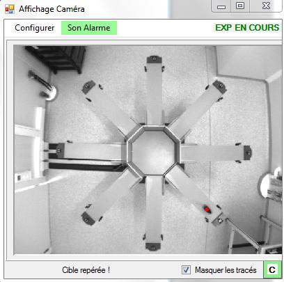 Screenshot radial maze2